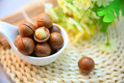 macadamia-nuts-nut-protein