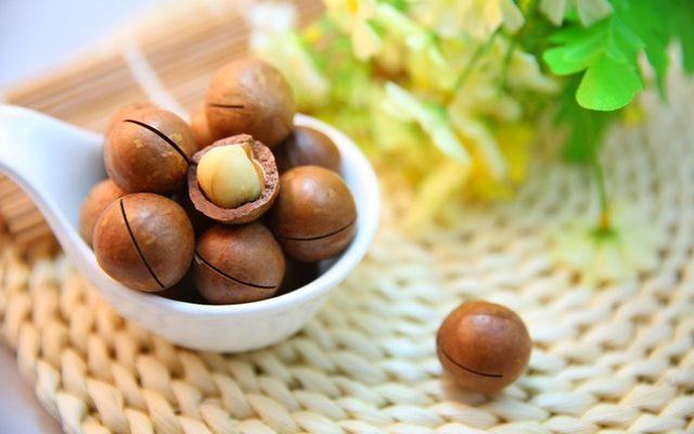 macadamia-nuts-nut-protein